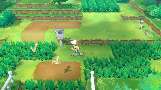 exploracion pokemon